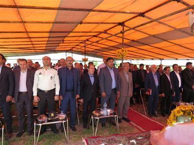 برگزاری جشنواره برداشت آفتابگردان روغنی در شهرستان شوط